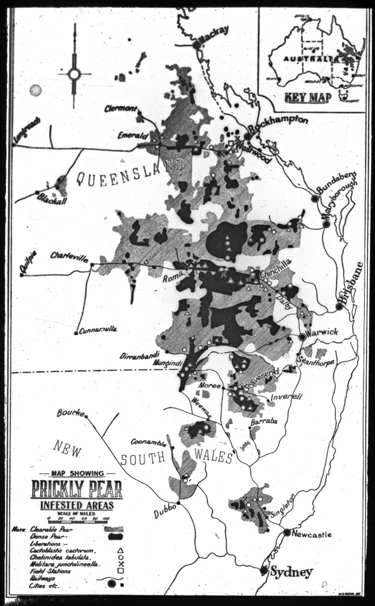 Map showing prickly pear-infested areas, 1923–1932.
